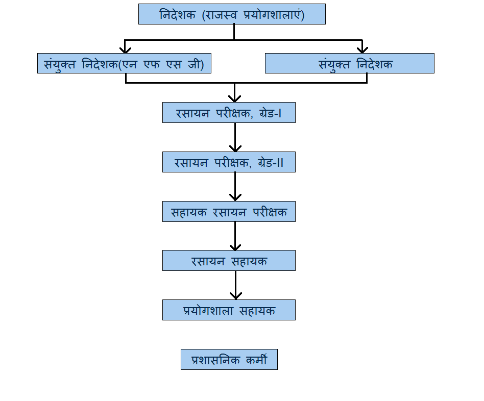 org-structure-hindi.png